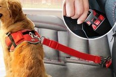 TAILUP-Dog-car-seat-belt-safety-protector-travel-pets-accessories-dog-leash-Collar-breakaway-solid_640x640